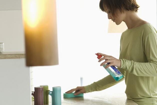 Ежедневная уборка и чистка на кухне профилактика от насекомых.