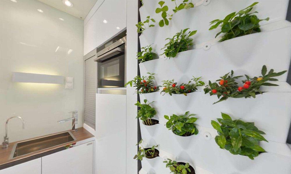 Живые растения в качестве декора выигрышно освежают интерьер