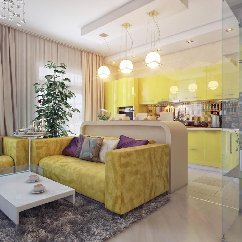 Дизайн комната студия с кухней фото