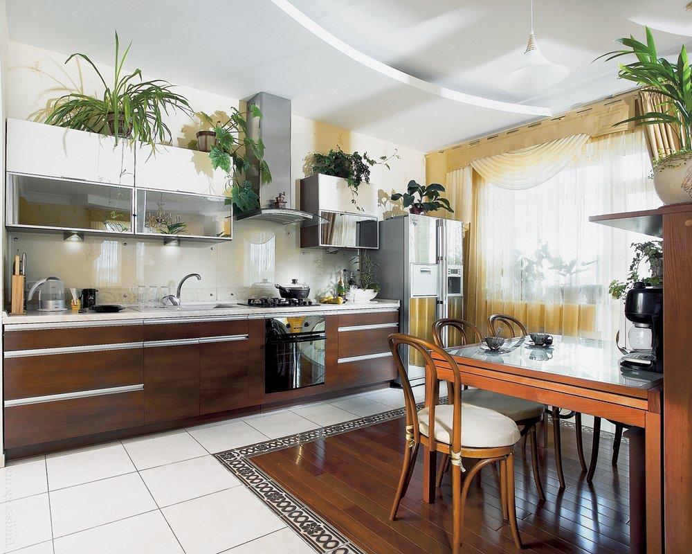 Растения на кухне надо чаще поливать и регулярно протирать