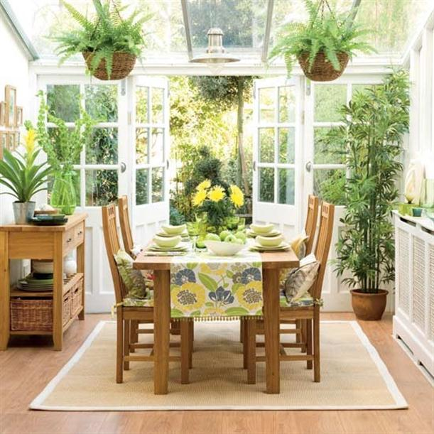 Кухня - райский уголок для растений