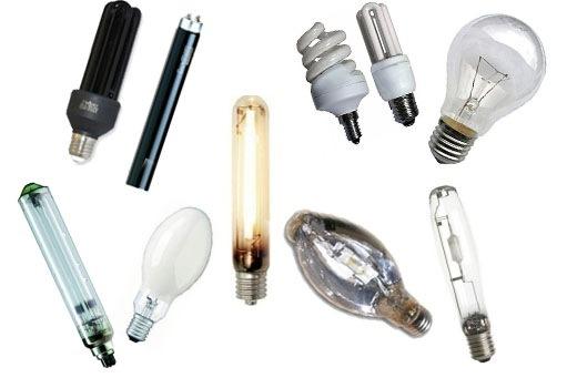 Наиболее популярные модели ламп
