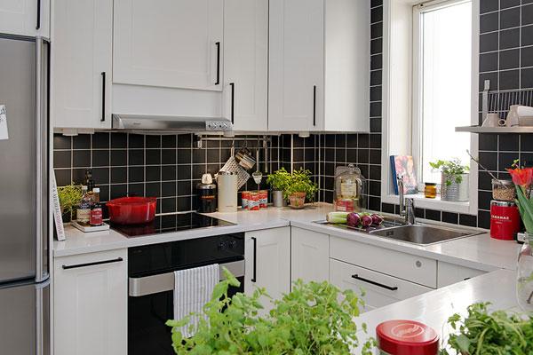 Небольшая кухня декорированная комнатными растениями