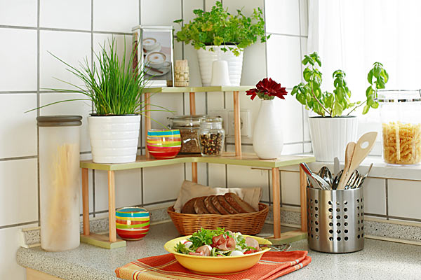 Декор интерьера кухни комнатными растениями